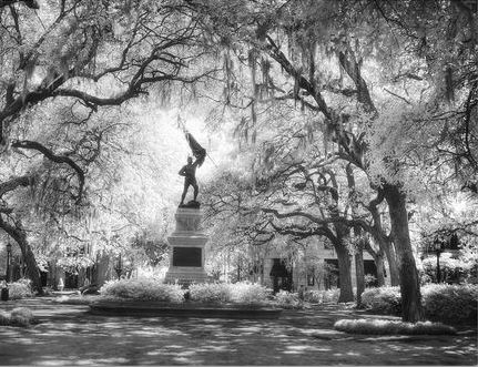 Walking Past Ghost Tree In Madisons >> Savannah Ghostwalker Tour Details Savannah Ghostwalker Savannah